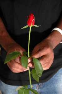 man_with_rose